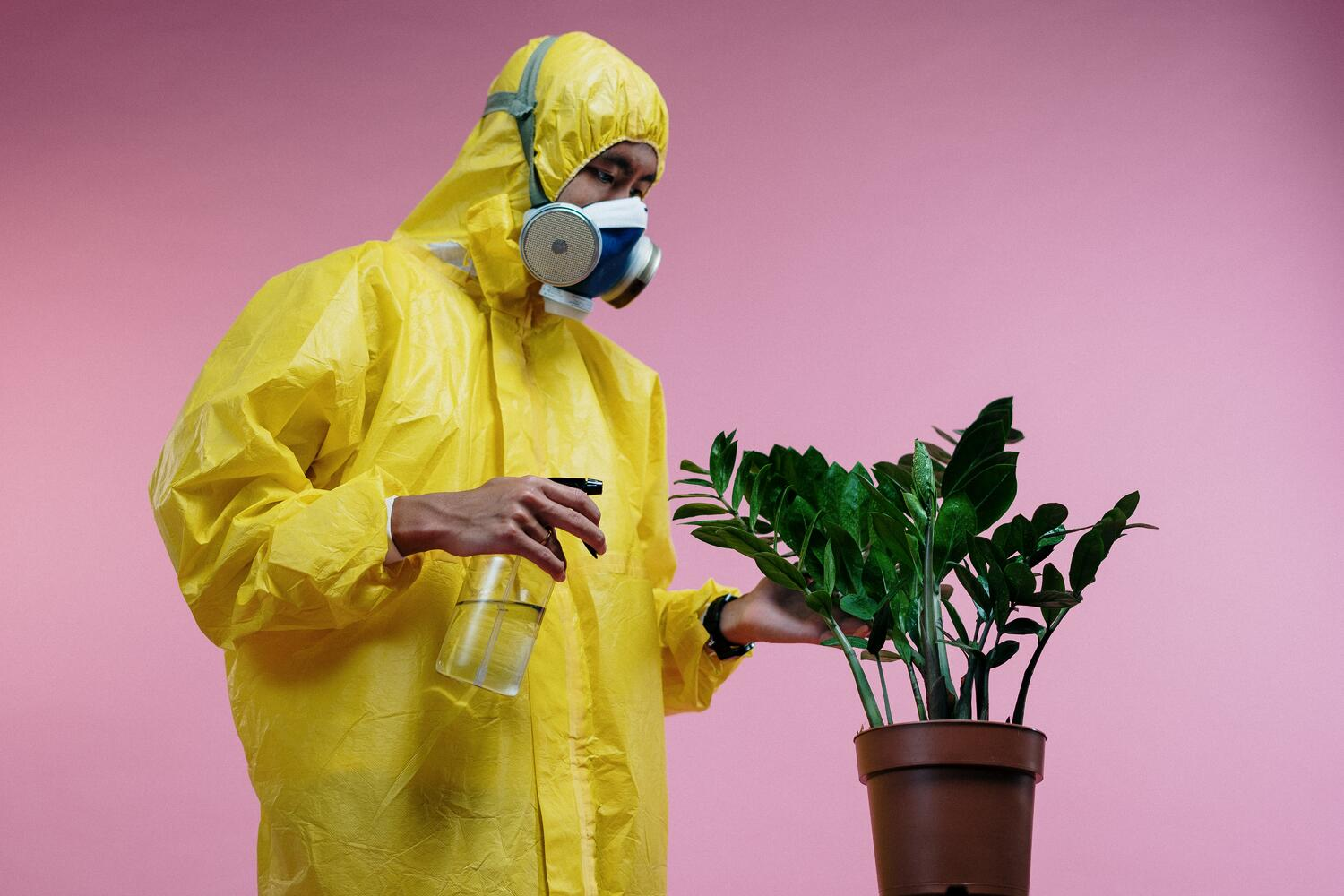 person-in-yellow-coveralls-spraying-plant-3951388